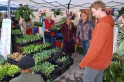 Can you believe the 14th annual Garden Fest returns to Nelson May 9