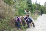 Plenty of activities during the third annual BC Invasive Species Week