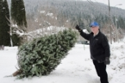Lions club, Air Cadets hit streets Saturday for Christmas Tree pickup