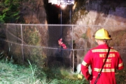 A member of Nelson Fire Department is lowered into the ravine above Cottonwood Falls Park during a daring rescue in Nelson Friday night. — Photo courtesy Nelson Fire Rescue