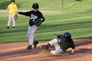 Lions Park was a beehive of activity during the Nelson and District Baseball Association season.