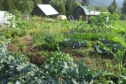 Are changes to ALR regulations in the Kootenays discriminatory? — Photo courtesy Tricycle Farms Website