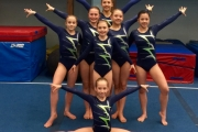 The Glacier Club gymnasts includes, back row, L-R, Brianne Stefani, Dafni van Hellemond, Olivia Kelly, Abby Majeski and Lily Taylor. Middle, Shelbi van Hellemond and front, Eden Bellman. Missing, Provincial team members, Teagan McTague, Gwen McCrory, Sara Tolles, Matthew Bullen and Zoe Crisfield. — Photo courtesy Glacier Gym Club