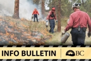 Smoke from this 24.5-hectare controlled burn could be visible from the communities of Duncan Lake, Meadow Creek and Howser.