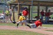 Aditya Manhas attempts to slide under the Pirate's Aaron Spurge tag at home while Cardinals Camryn Parnell looks on at the new-and-improved Lions Park Ball Diamond. — Photo courtesy Andrew Osika