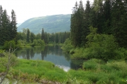 This 31 hectare (76 acre) property expands the Lower Lardeau Duncan Conservation Lands Complex. — Submitted photo