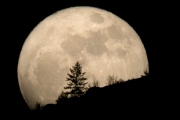 The moon will be 'super' Saturday night.