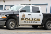 Man who climbs tree to escape Nelson Police in court Monday to face long list of charges