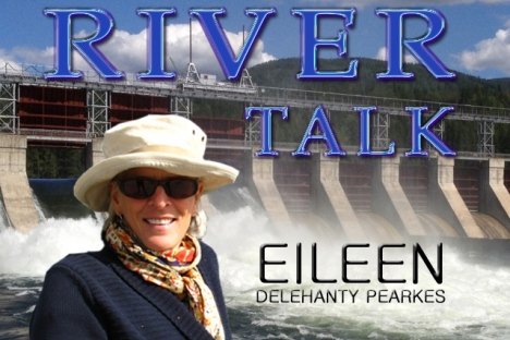 River Talks — Some call them  Salmon, I call them Persistence