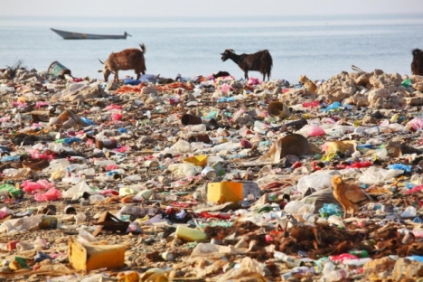 One tiny sample of trash pollution: just one symptom.