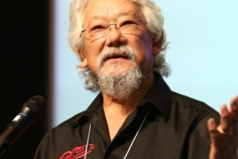Photo from David Suzuki Foundation
